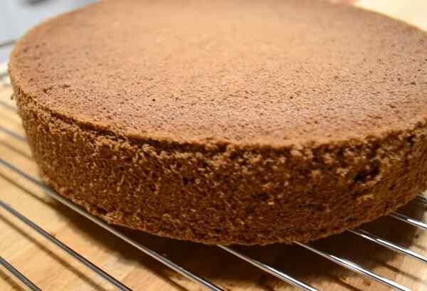 Шоколадный бисквит для торта Пьяная вишня